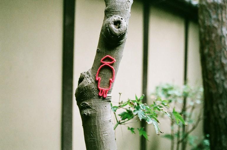 """「奈良爛々(ならまち格子の家)」 / """"Nararanran -Naramachi"""", 2011, yarn on maple tree"""