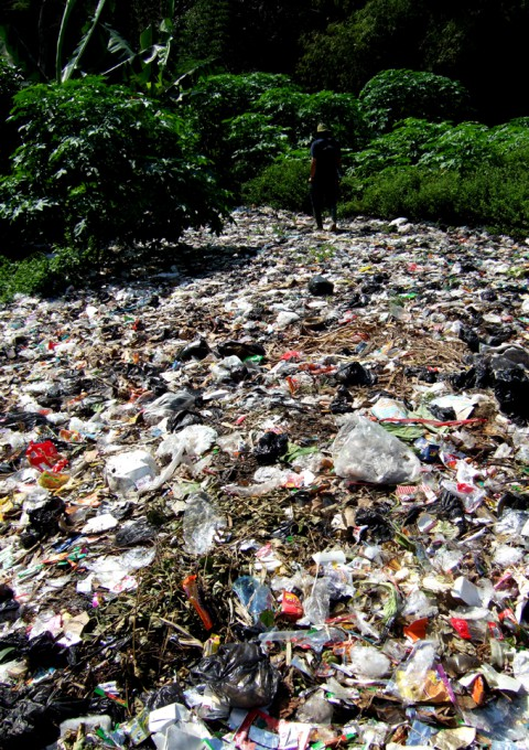 「ジョグジャカルタのアロワナ」/ ''Yogyakarta's arowana'', 2008, garbage of Yogyakarta